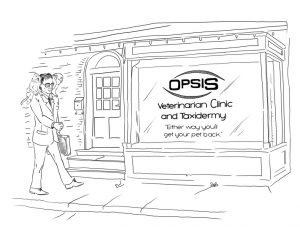 Opsis Post Meeting Review
